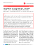 """Báo cáo y học: """" Identification of novel conserved functional motifs across most Influenza A viral strains"""""""