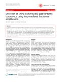 "Báo cáo y học: "" Detection of swine transmissible gastroenteritis coronavirus using loop-mediated isothermal amplification"""