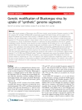 "Báo cáo y học: "" Genetic modification of Bluetongue virus by uptake of ""synthetic"" genome segments"""