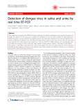 """Báo cáo khoa học: """" Detection of dengue virus in saliva and urine by real time RT-PCR"""""""