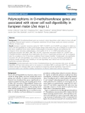 "báo cáo khoa học: ""  Polymorphisms in O-methyltransferase genes are associated with stover cell wall digestibility in European maize (Zea mays L.)"""