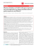 """Báo cáo y học: """" Effective inhibition of HCMV UL49 gene expression and viral replication by oligonucleotide external guide sequences and RNase P"""""""