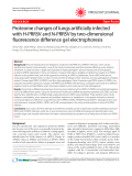 "Báo cáo y học: ""Proteome changes of lungs artificially infected with H-PRRSV and N-PRRSV by two-dimensional fluorescence difference gel electrophoresis"""
