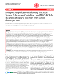 "Báo cáo y học: ""Multiplex Amplification Refractory Mutation System Polymerase Chain Reaction (ARMS-PCR) for diagnosis of natural infection with canine distemper virus"""