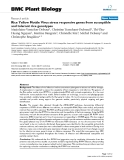 """báo cáo khoa học: """"  Rice Yellow Mottle Virus stress responsive genes from susceptible and tolerant rice genotypes"""""""