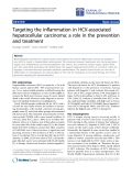 "Báo cáo hóa học: "" Targeting the inflammation in HCV-associated hepatocellular carcinoma: a role in the prevention and treatment"""