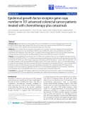 "Báo cáo hóa học: ""  Epidermal growth factor receptor gene copy number in 101 advanced colorectal cancer patients treated with chemotherapy plus cetuximab"""