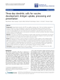 "Báo cáo hóa học: "" Three-day dendritic cells for vaccine development: Antigen uptake, processing and presentation"""