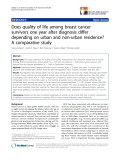 "báo cáo hóa học: ""  Does quality of life among breast cancer survivors one year after diagnosis differ depending on urban and non-urban residence? A comparative study"""
