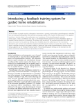 "báo cáo hóa học: ""Introducing a feedback training system for guided home rehabilitation"""