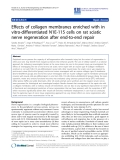"báo cáo hóa học: "" Effects of collagen membranes enriched with in vitro-differentiated N1E-115 cells on rat sciatic nerve """