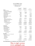 CITY OF TERRELL, TEXAS ANNUAL FINANCIAL REPORT SEPTEMBER 30, 2007_part4