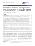 "báo cáo hóa học: "" Neuroimmune modulation following traumatic stress in rats: evidence for an immunoregulatory cascade mediated by c-Src, miRNA222 and PAK1"""