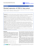 "báo cáo hóa học:""  Elevated expression of CDK4 in lung cancer"""