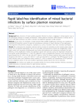 "báo cáo hóa học:"" Rapid label-free identification of mixed bacterial infections by surface plasmon resonance"""