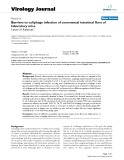 """báo cáo hóa học:""""  Barriers to coliphage infection of commensal intestinal flora of laboratory mice"""""""