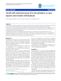 """báo cáo hóa học:""""   Small cell osteosarcoma of a toe phalanx: a case report and review of literature"""""""