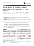 """báo cáo hóa học:""""Factors affecting the relationship between psychological status and quality of life in COPD patients"""""""