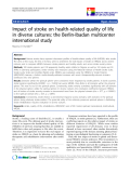 "báo cáo hóa học: ""  Impact of stroke on health-related quality of life in diverse cultures: the Berlin-Ibadan multicenter international study"""