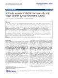 "Báo cáo hóa học: ""  Atomistic aspects of ductile responses of cubic silicon carbide during nanometric cutting"""