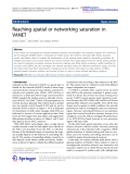 "Báo cáo hóa học: ""  Reaching spatial or networking saturation in VANET"""