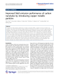 """Báo cáo hóa học: """"  Improved field emission performance of carbon nanotube by introducing copper metallic particles"""""""