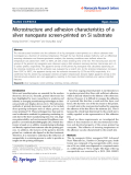 "Báo cáo hóa học: ""   Microstructure and adhesion characteristics of a silver nanopaste screen-printed on Si substrate"""