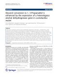 "Báo cáo hóa học: "" Glycerol conversion to 1, 3-Propanediol is enhanced by the expression of a heterologous alcohol dehydrogenase gene in Lactobacillus reuteri"""