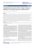 """báo cáo hóa học: """"  Complementary tensor-driven image coherence diffusion for oriented structure enhancement"""""""