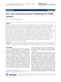 """Báo cáo hóa học: """"  DSC and universal bit-level combining for HARQ systems"""""""