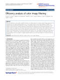 "Báo cáo hóa học: "" Efficiency analysis of color image filtering"""
