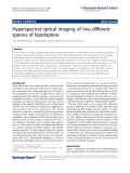 """Báo cáo hóa học: """"  Hyperspectral optical imaging of two different species of lepidoptera"""""""