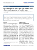 """Báo cáo hóa học: """"  Carbon composite micro- and nano-tubes-based electrodes for detection of nucleic acids"""""""
