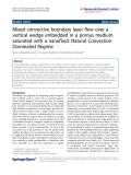 "Báo cáo hóa học: ""   Mixed convective boundary layer flow over a vertical wedge embedded in a porous medium saturated with a nanofluid: Natural Convection Dominated Regime"""