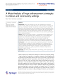 """Báo cáo hóa học: """" A Meta-Analysis of hope enhancement strategies in clinical and community settings"""""""