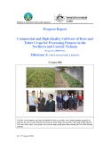 Báo cáo sự kiện: Commercial and High Quality Cultivars of Root and Tuber Crops for Processing Purpose in the Northern and Central Vietnam - (Milestone 3)