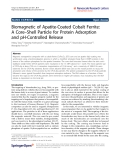 "Báo cáo hóa học: ""  Biomagnetic of Apatite-Coated Cobalt Ferrite: A Core–Shell Particle for Protein Adsorption and pH-Controlled Release"""