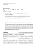 "Báo cáo hóa học: ""  Research Article Opportunistic Data Collection in Sparse Wireless Sensor Networks"""