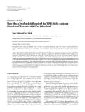 "Báo cáo sinh học: "" Research Article How Much Feedback Is Required for TDD Multi-Antenna Broadcast Channels with User Selection? Umer Salim and Dirk Slock"""