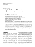 """Báo cáo hóa học: """" Research Article Imaging Arterial Fibres Using Diffusion Tensor Imaging—Feasibility Study and Preliminary Results"""""""