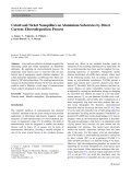 """Báo cáo hóa học: """"Cobalt and Nickel Nanopillars on Aluminium Substrates by Direct Current Electrodeposition Process"""""""