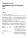 "Báo cáo hóa học: "" In Situ Mineralization of Magnetite Nanoparticles in Chitosan Hydrogel"""