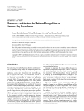 "báo cáo hóa học:""  Research Article Hardware Architecture for Pattern Recognition in Gamma-Ray Experiment"""