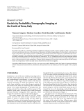 "báo cáo hóa học:""   Research Article Resistivity Probability Tomography Imaging at the Castle of Zena, Italy"""
