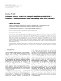 "Báo cáo hóa học: "" Review Article Antenna Subset Selection for Cyclic Prefix Assisted MIMO Wireless Communications over Frequency Selective Channels"""