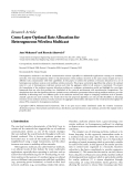 """Báo cáo hóa học: """" Research Article Cross-Layer Optimal Rate Allocation for Heterogeneous Wireless Multicast"""""""