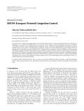 "Báo cáo hóa học: "" Research Article HSUPA Transport Network Congestion Control"""