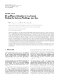 "Báo cáo hóa học: ""  Review Article Bit and Power Allocation in Constrained Multicarrier Systems: The Single-User Case"""