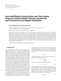 "Báo cáo hóa học: "" Spectrally Efficient Communication over Time-Varying Frequency-Selective Mobile Channels: Variable-Size Burst Construction and Adaptive Modulation"""