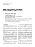 "Báo cáo hóa học: "" Image Quality Assessment Using the Joint Spatial/Spatial-Frequency Representation"""